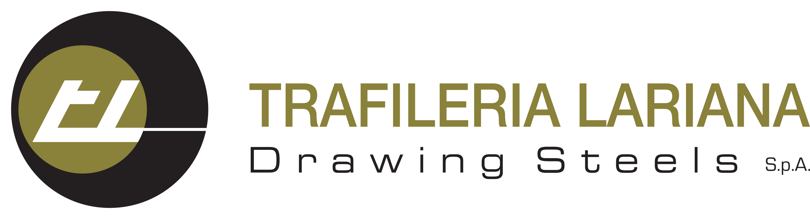TRAFILERIA LARIANA Drawing Steels